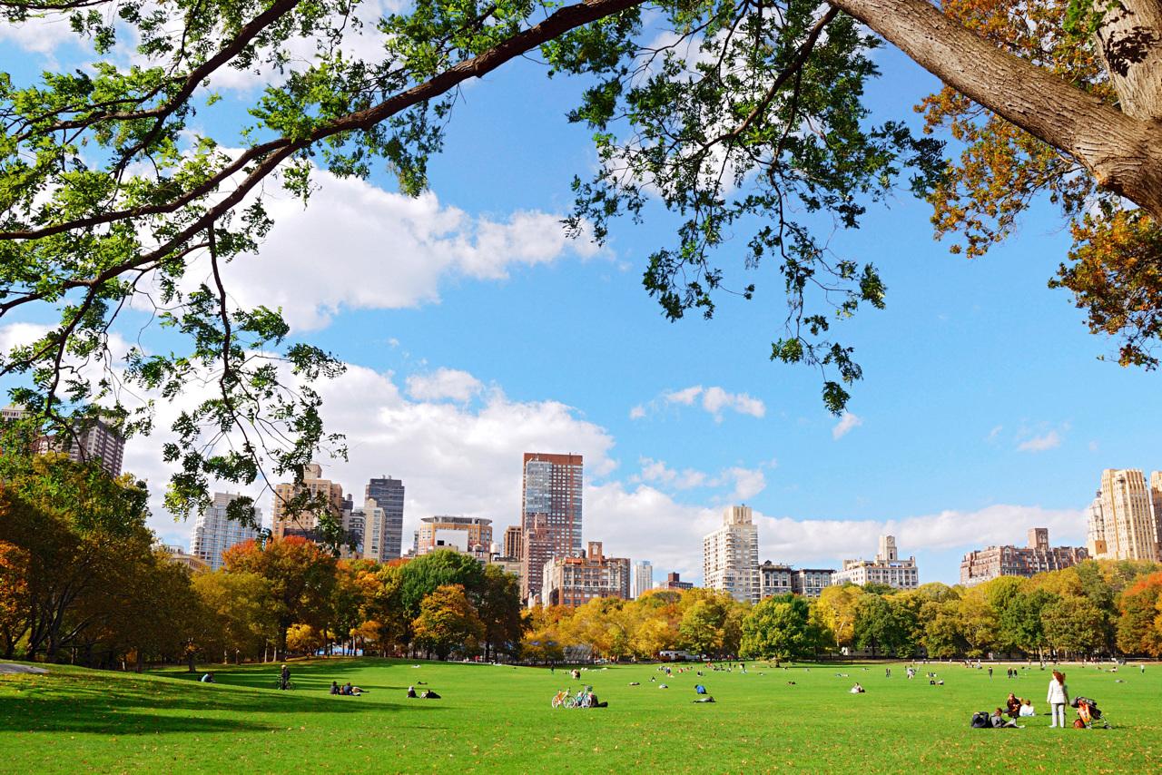 Central Park rommer både innsjøer, en dyrepark, et lite slott og hundrevis av ekorn! Lei sykler for å oppleve mest mulig av den store parken midt på Manhattan.