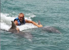 a danse med delfiner