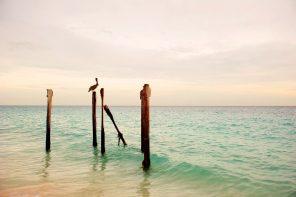 Aruba: Fra A til Å