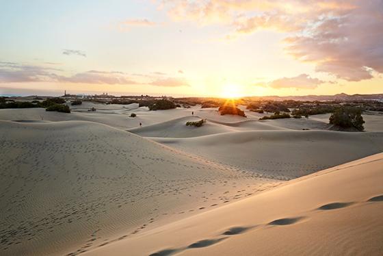 Sanddynene på Maspalomas
