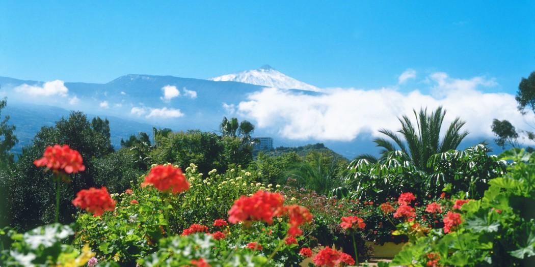 Den store Tenerifeguiden