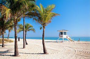 8 grunner til å reise til Florida